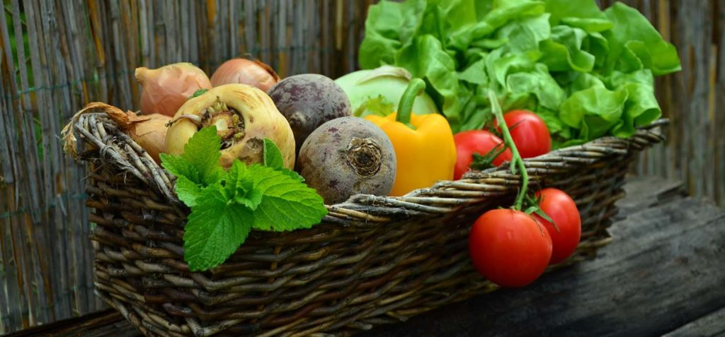 Global battle against food waste